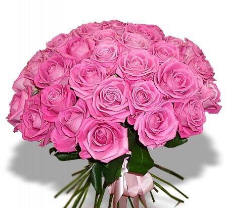 Доставка цветов ротсов тюльпаны купить оптом иркутск