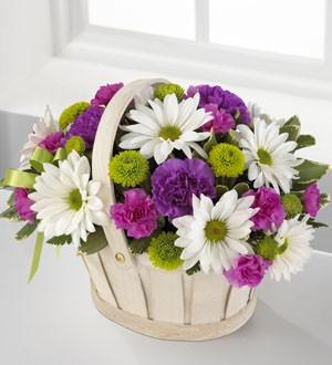Доставка цветов самар доставка цветов владимир недорого ип