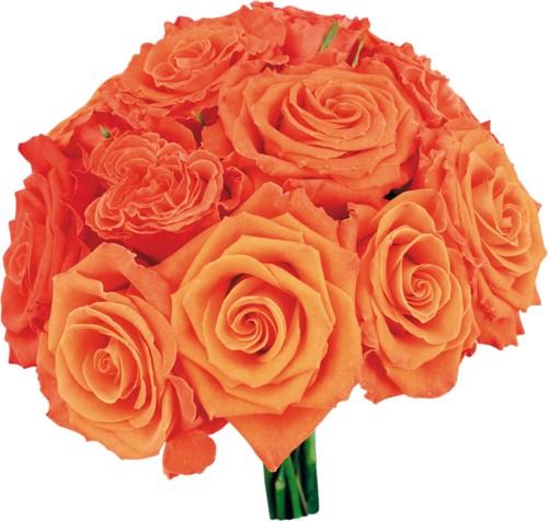 Доставка цветов челябинск эдельвейс