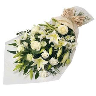 Заказ цветов 24часа спб купитьсадовые цветы москва