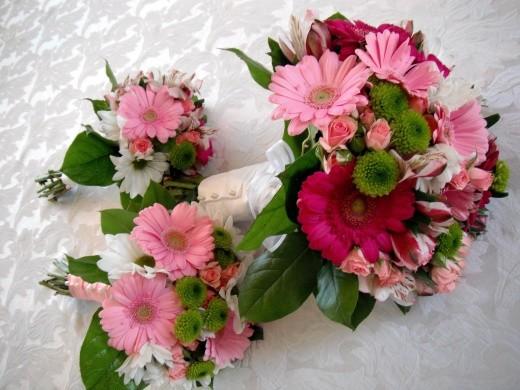 Заказ цветов доставка цветов цветы киев продажа цветов где купить цветы нижний новгород