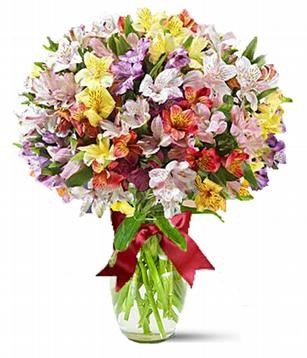 Заказ цветов в купчино купить розы оптом челябинске