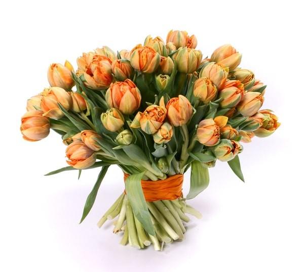 Где купить цветы воронеж где купить цветы в краснодаре форум
