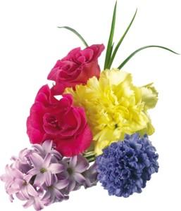 Доставка цветов белгород курьером