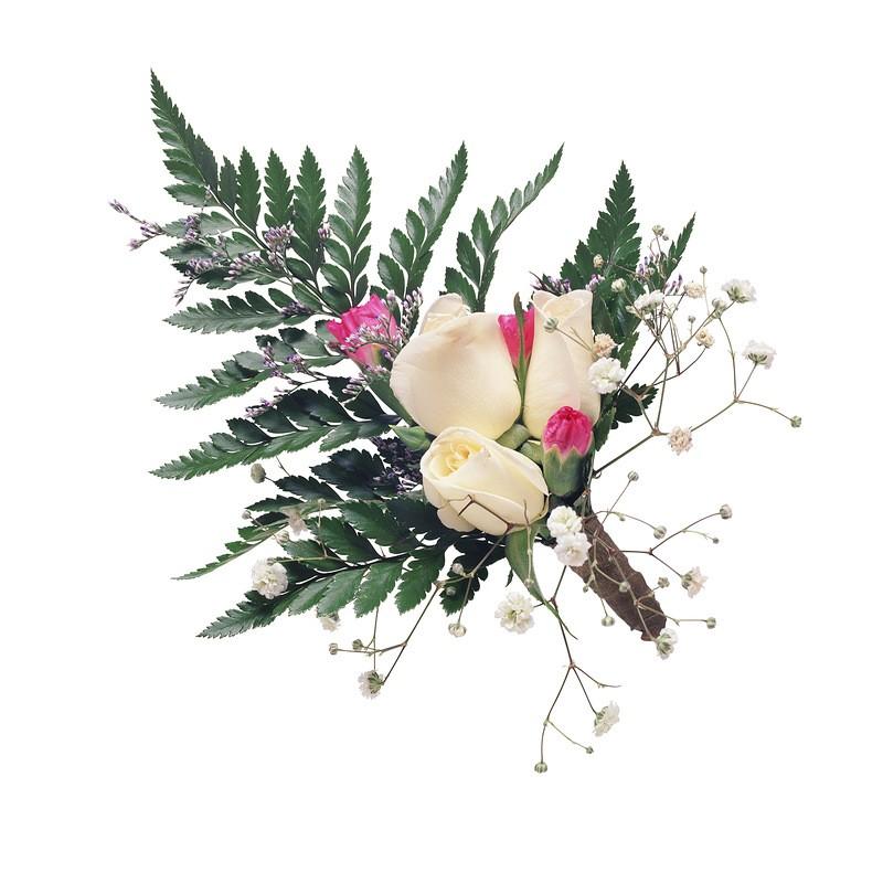 Доставка цветов москва ювао заказать семена комн.цветов почтой-без регистрации