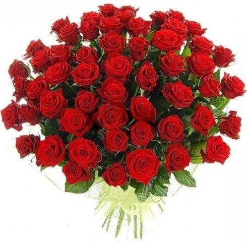 Доставка цветов шелехов нижний новгород доставка комнатных цветов